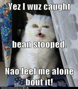 Yez I wuz caught bean stooped. Nao leef me alone bout it! / Courtesy of LOL Builder, http://builder.cheezburger.com/builder/