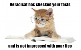 'Veracicat has checked your facts and is not impressed with your lies' / PsiCop graphic, based on http://www.quitor.com/cat-with-glasses.html