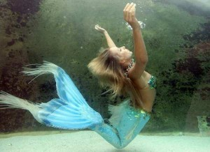 'Hannah the Mermaid' in the Mermaid Lagoon exhibit at Sydney Aquarium. Real or not real? The U.S. government says not real. (Torsten Blackwood / AFP/GettyImages / December 19, 2008, via the L.A. Times)